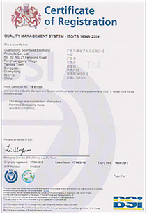 ISO / TS16949 automotive quality management system products
